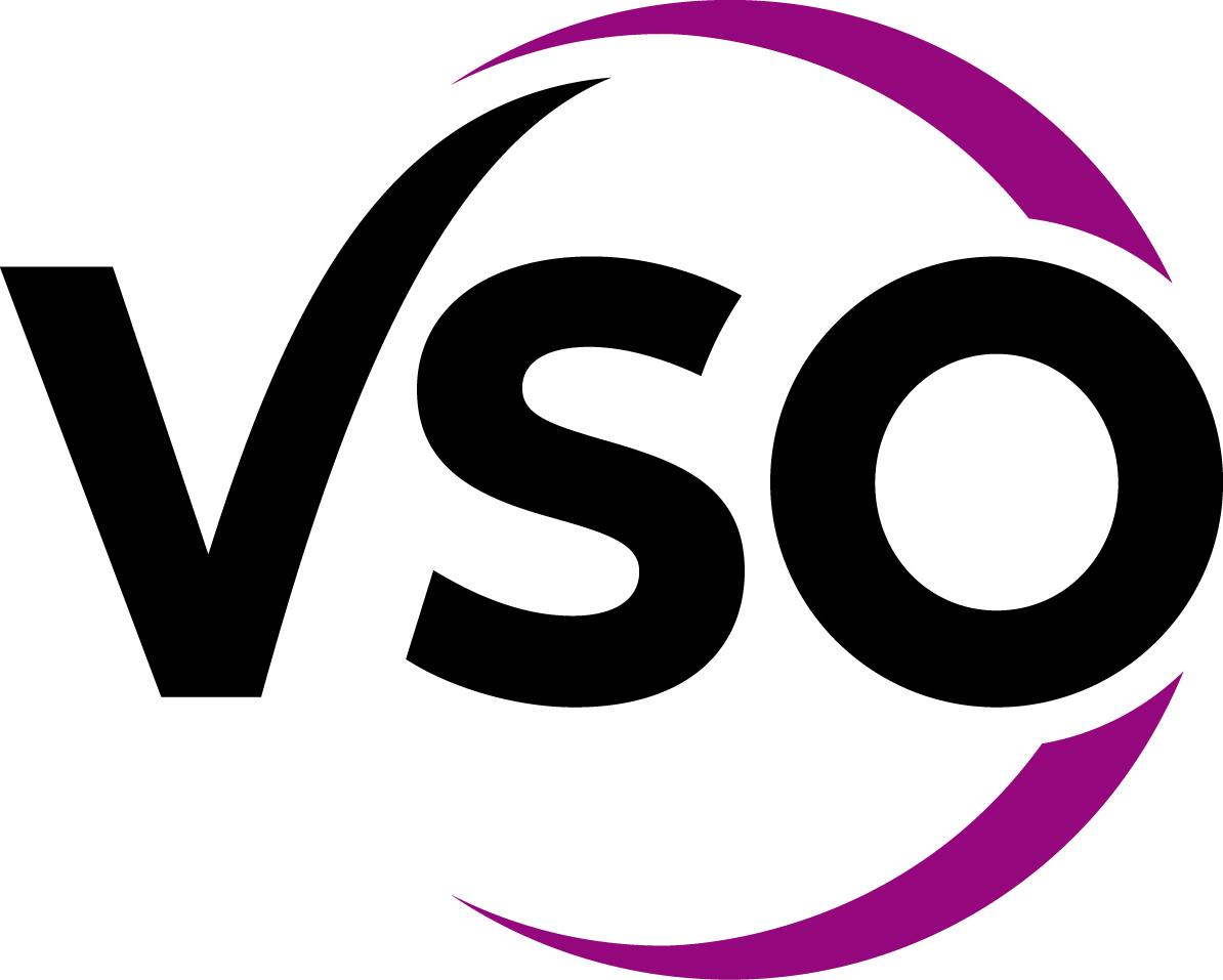 VSO International